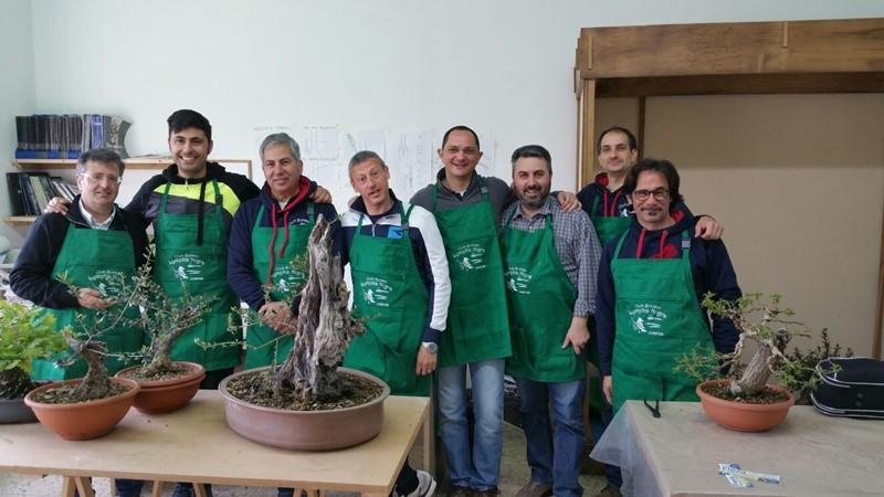 Mostra Nazionale di bonsai e suiseki a Cosenza: al via la IV edizione